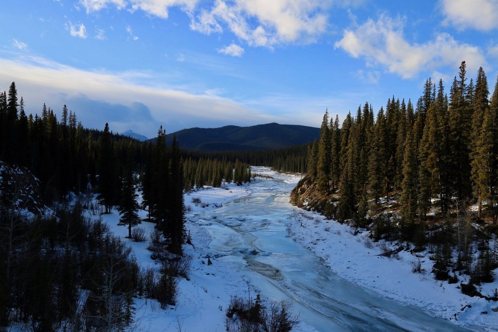 Just outside Jasper National Park, a coal mine threatens an Indigenous community's water supply - Published 3.1.2019