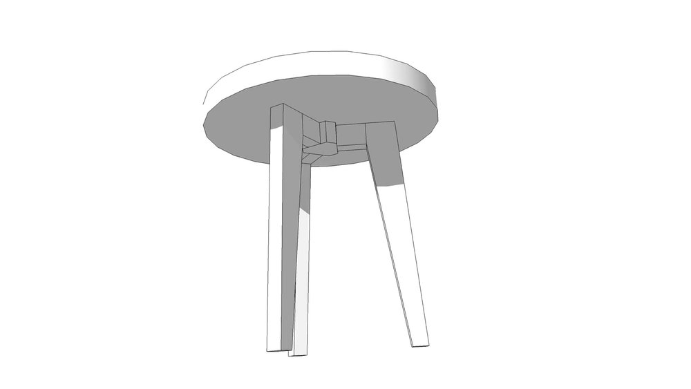 Model of the Leg Structure