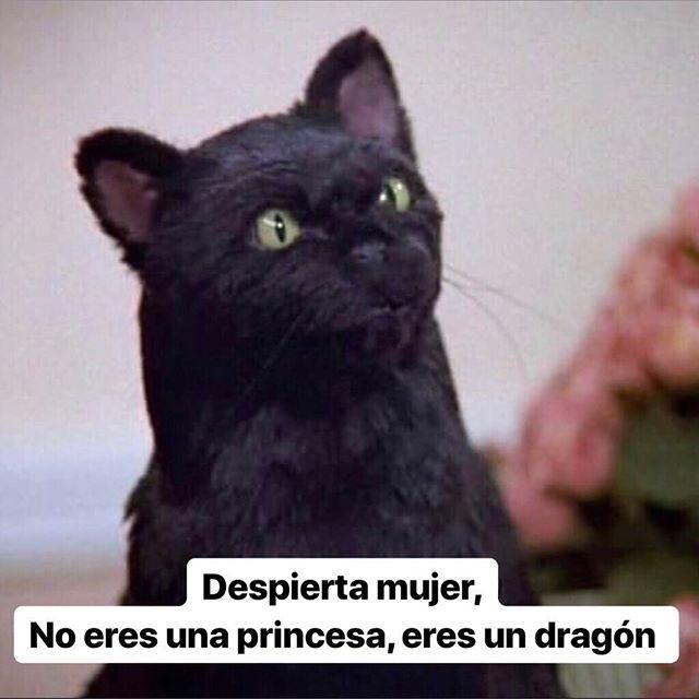 Muy temática la realización de que no somos princesas sino..Daenerys Targaryen 🐉🐲🐉⠀ #REBELLEwomen⠀⠀ #REBELLEblog⠀⠀ #TodasParaUnaUnaParaTodas #GOT #Gameofthrones #daenerystargaryen