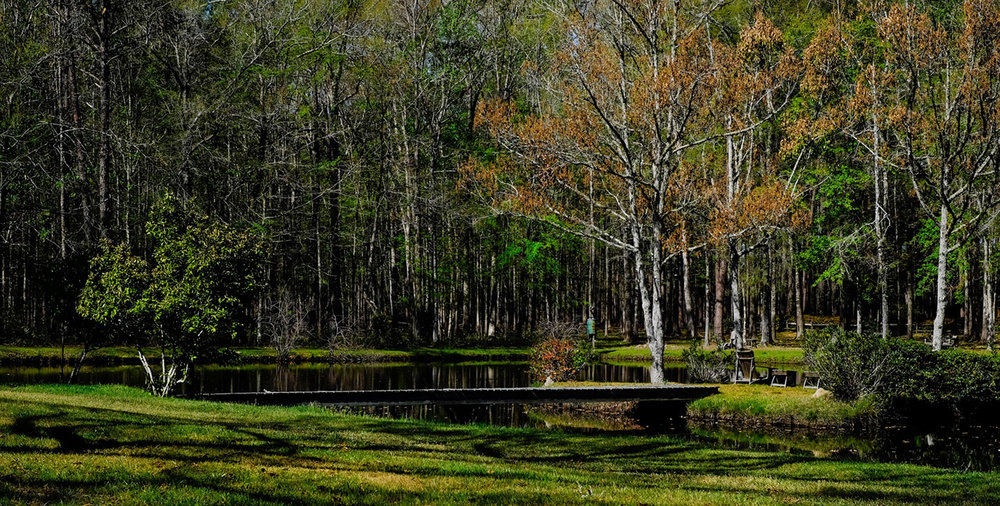 Two ponds   Fishing at multiple destinations.   view more