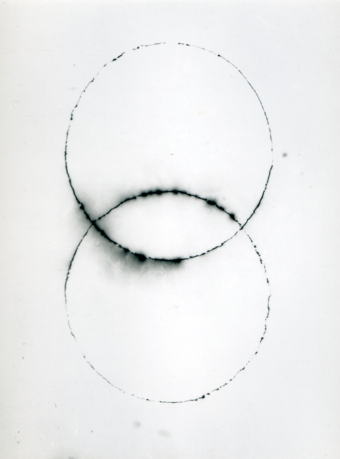 Venn (2017) sm.jpg