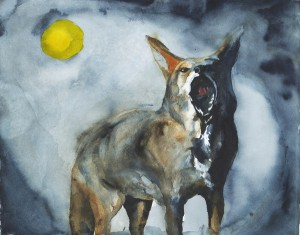 Coyote Moon by Roderick MacIver