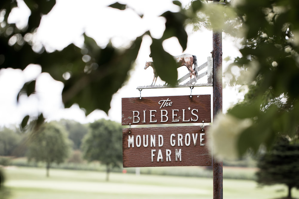 Gandjos_Tinko_BackSeatPhotography_backseatphoto3.JPG