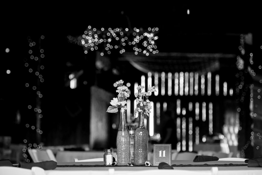 Gandjos_Tinko_BackSeatPhotography_backseatphoto68.JPG