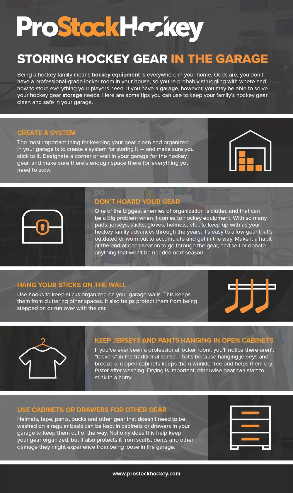 Infographic courtesy of  Pro Stock Hockey