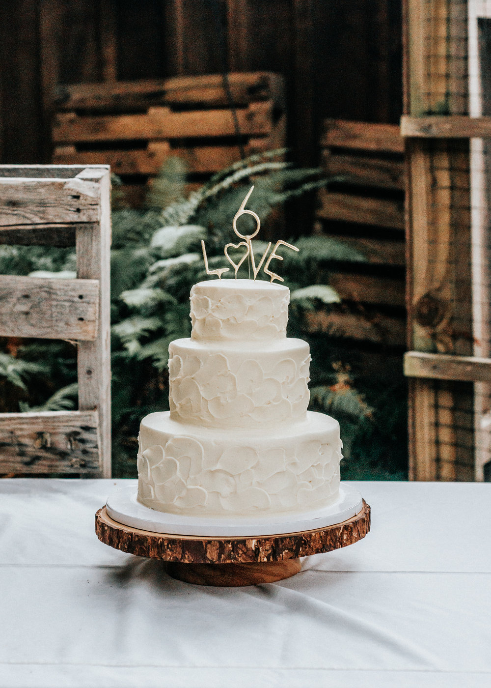 Fort Bragg, California + Wedding + Photographer +-+Cake