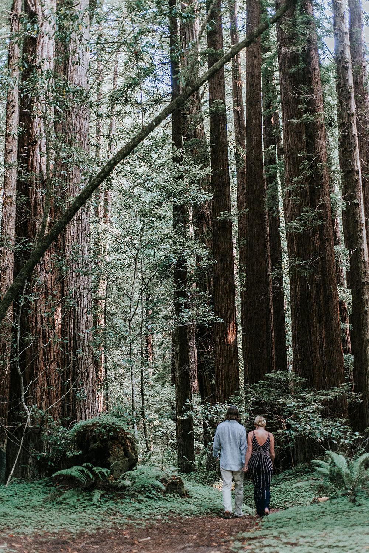 Redwoods+elopement+mendocino+wedding+-photographer