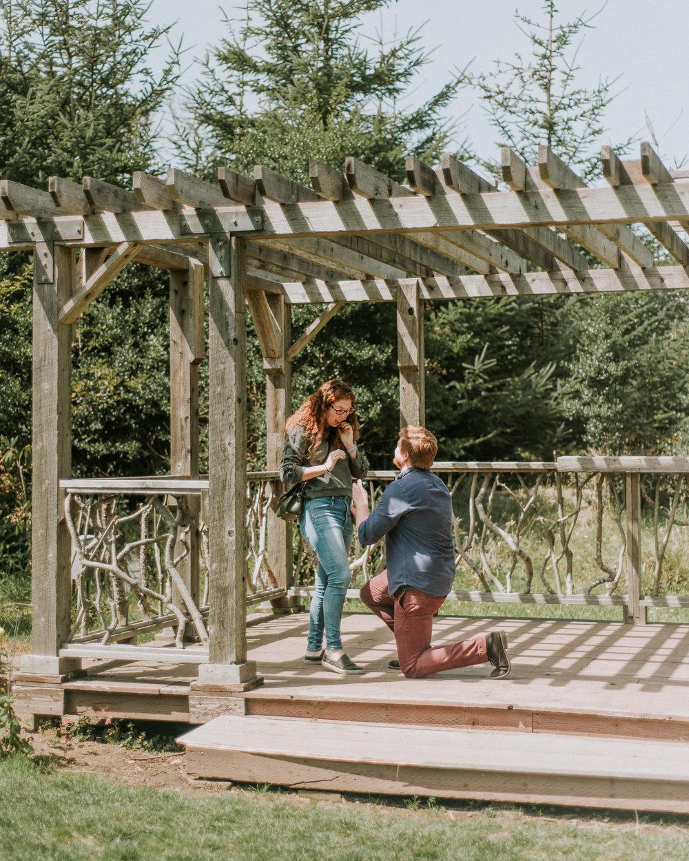 mendocino coast botanical gardens+wedding+photographer