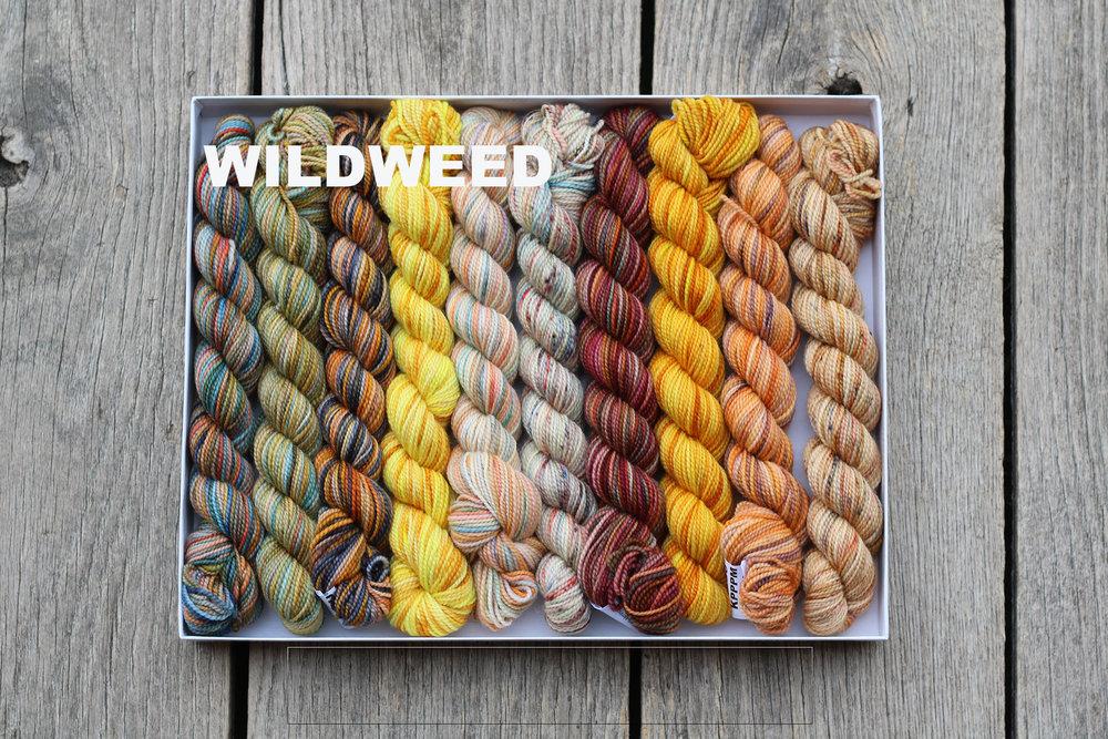 Box Wildweed 0671300 copy.jpg