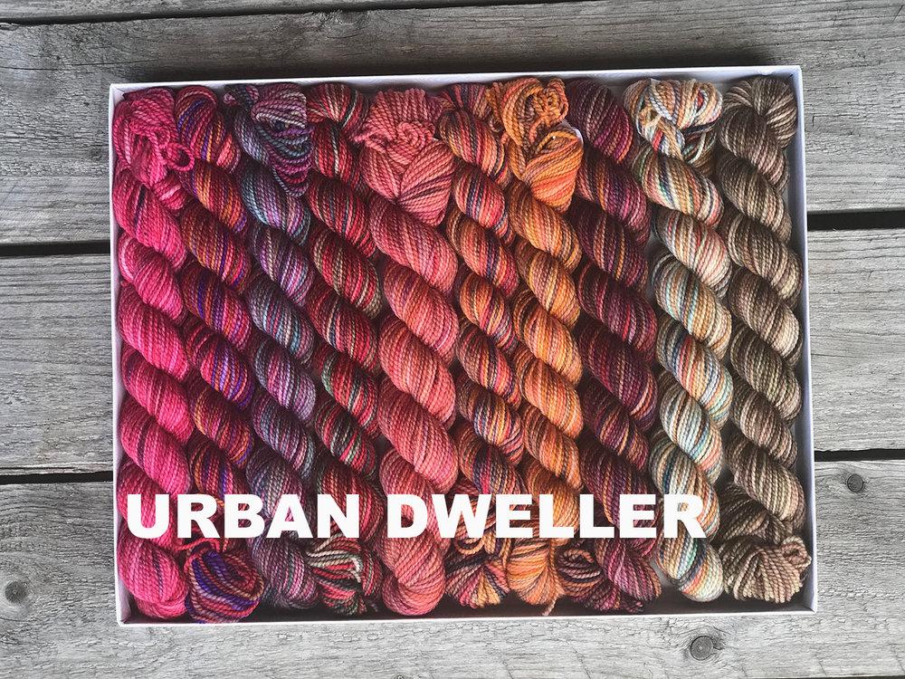 URBAN DWELLER 300IMG_5051.jpg