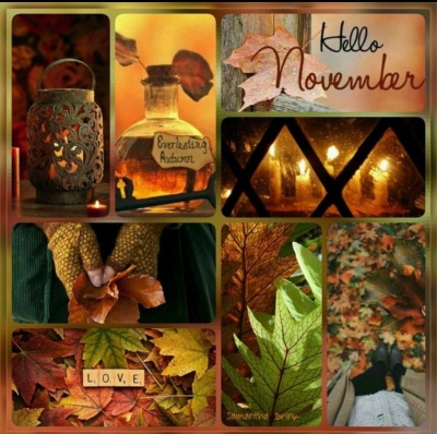 Novemberoverview.jpg