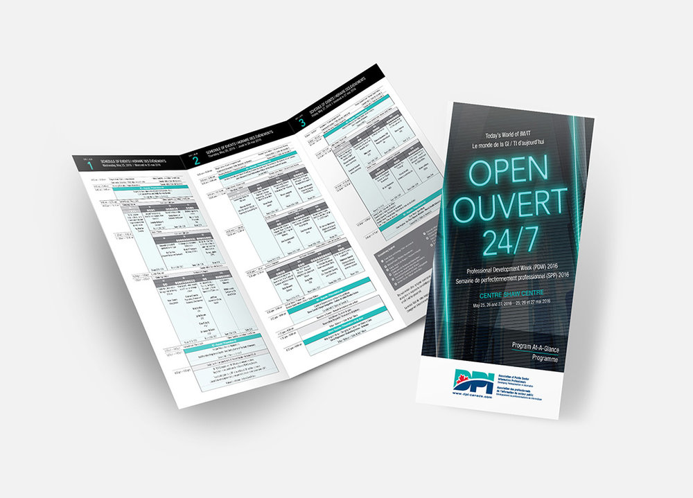 Trifold Brochure – DPI.jpg