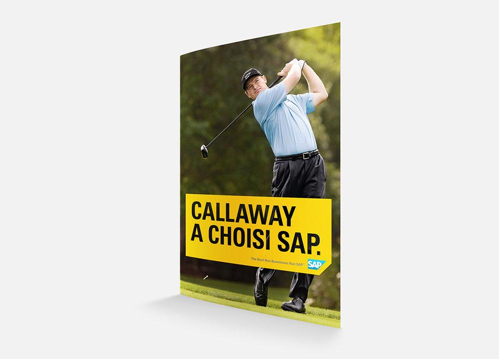 SAP – Poster 4.jpg