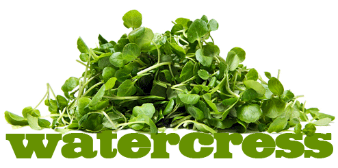 LV-Watercress.png