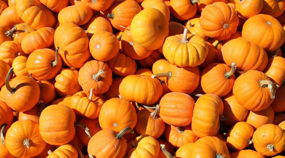 pumpkins-creative.jpg