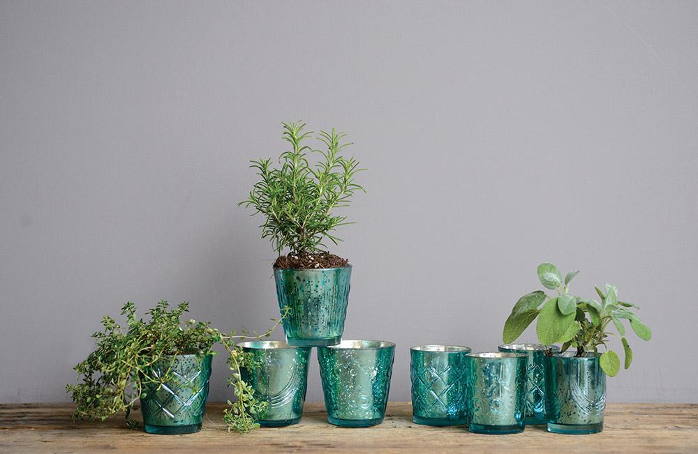 glasspots.jpg
