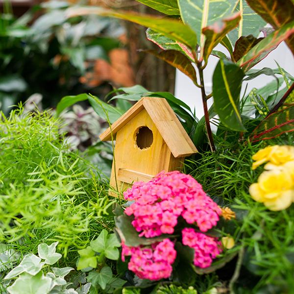 SpringBirdHouse.jpg