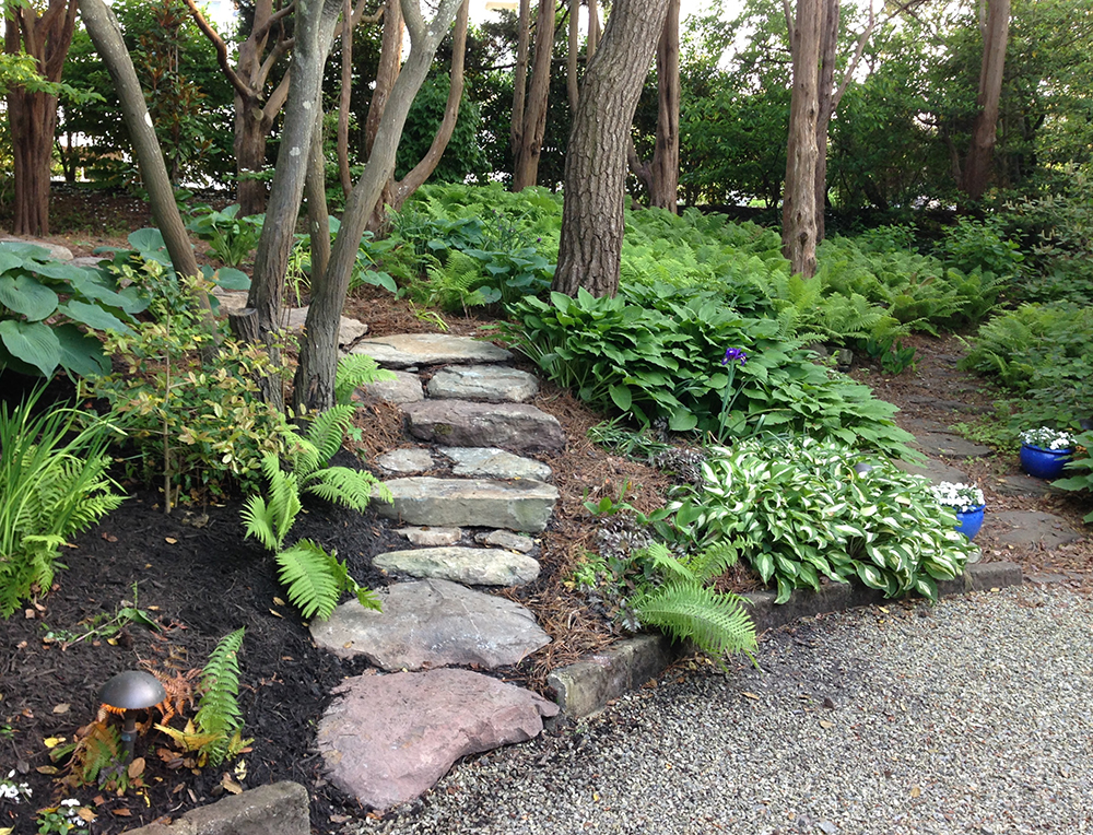 LANDSCAPING-New Photo (7).JPG