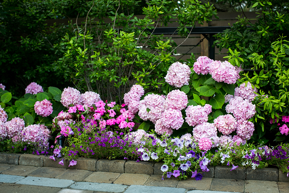 LANDSCAPING-New Photo (12).jpg