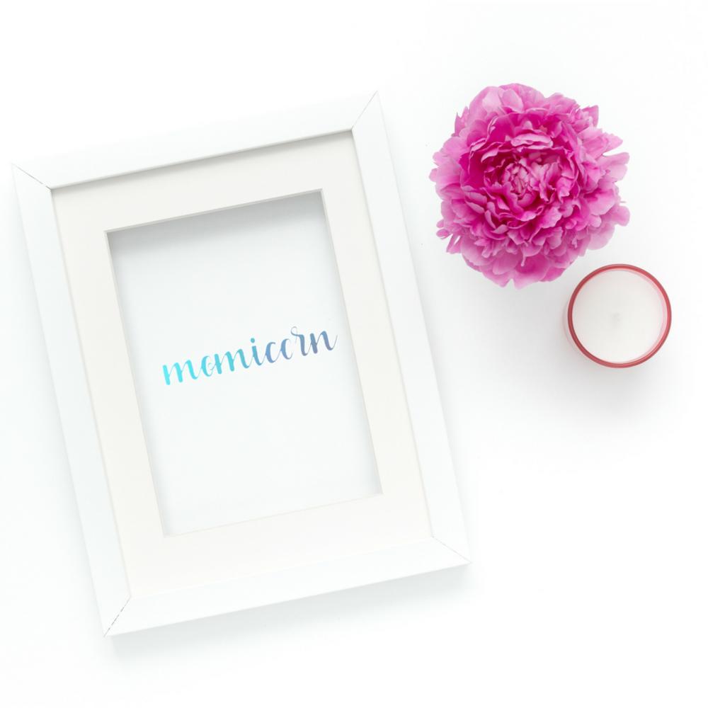 Momicorn_vinyl_series (6).png