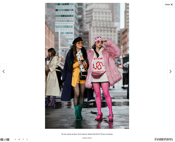 Petite Flower Presents NYFW FW18 Street Style Fashionista .png