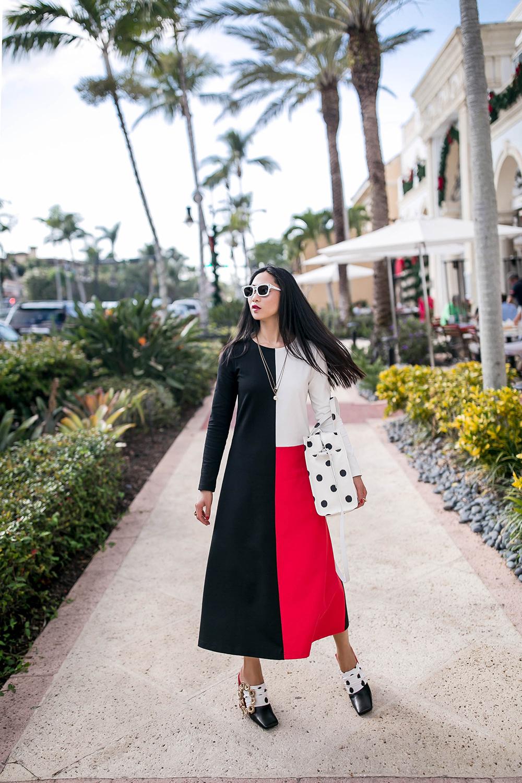 cherryblossomsdesign-color-block-dress-2.jpg