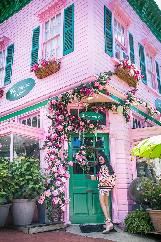 Pink-Rose-Vine-Greenworks-DC.jpg