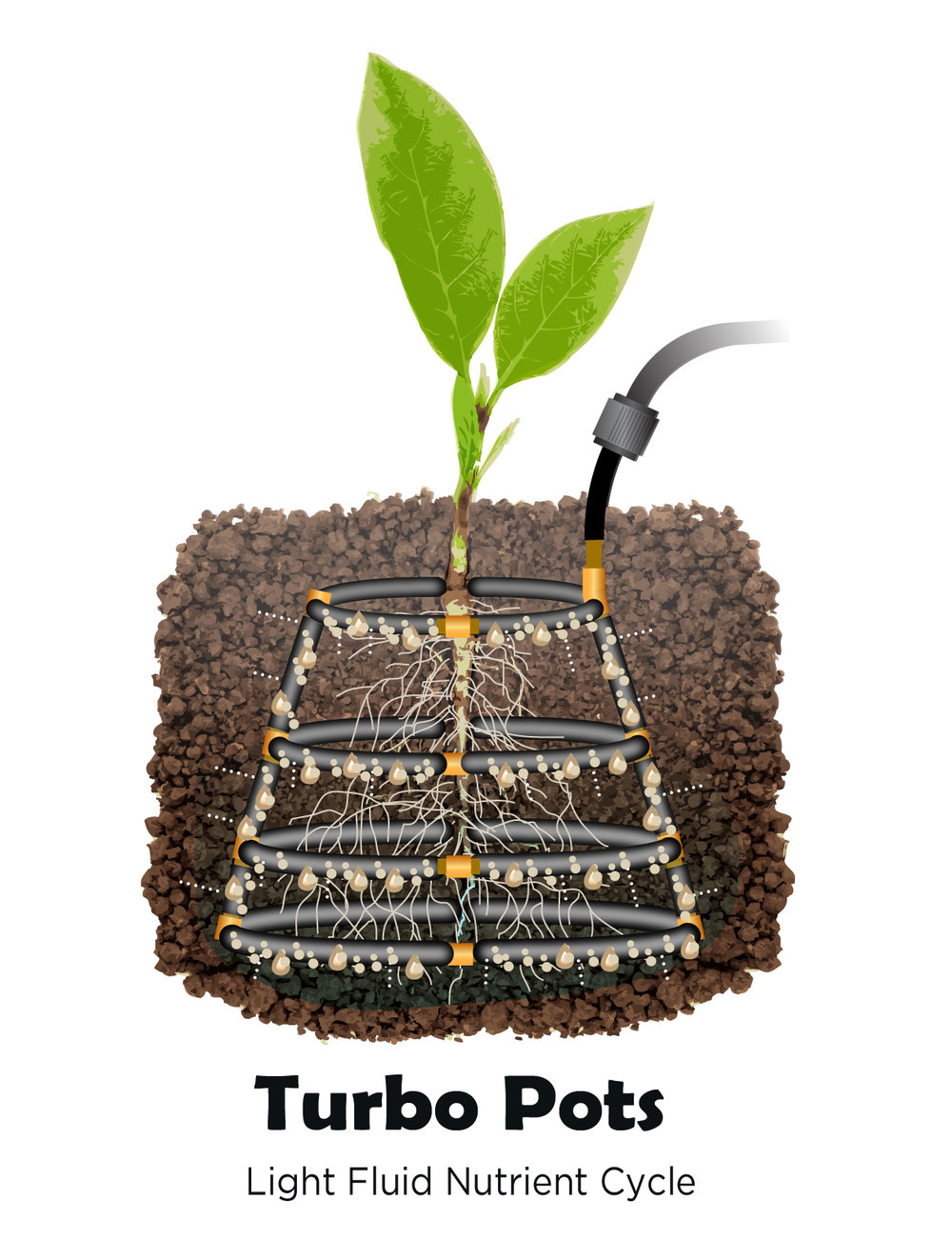 TURBO POT slideshow nutrient-4.jpg
