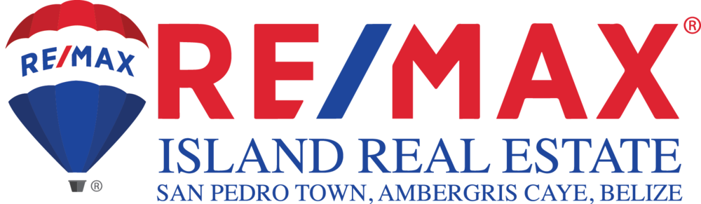 Remax Logo Fixed Updated.png