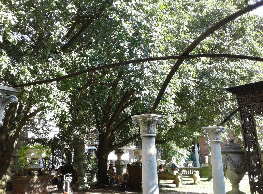 Elizabeth Street Garden -