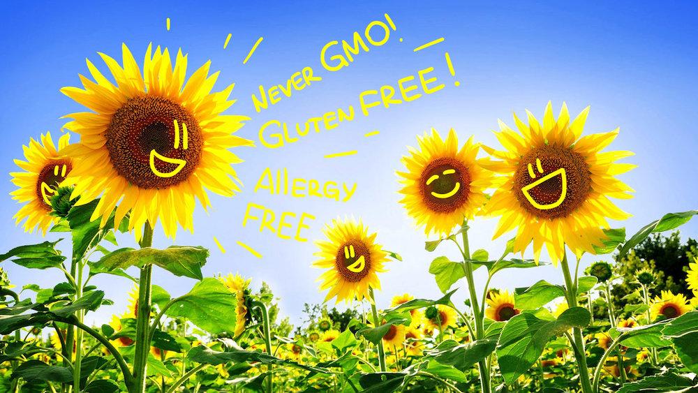 Sunflower+Never+GMO+Gluten+FREE+Allergy+FREE.jpeg