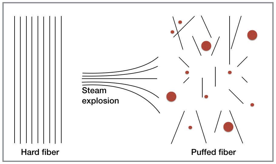 PLANETARIANS Steam Explosion.jpg