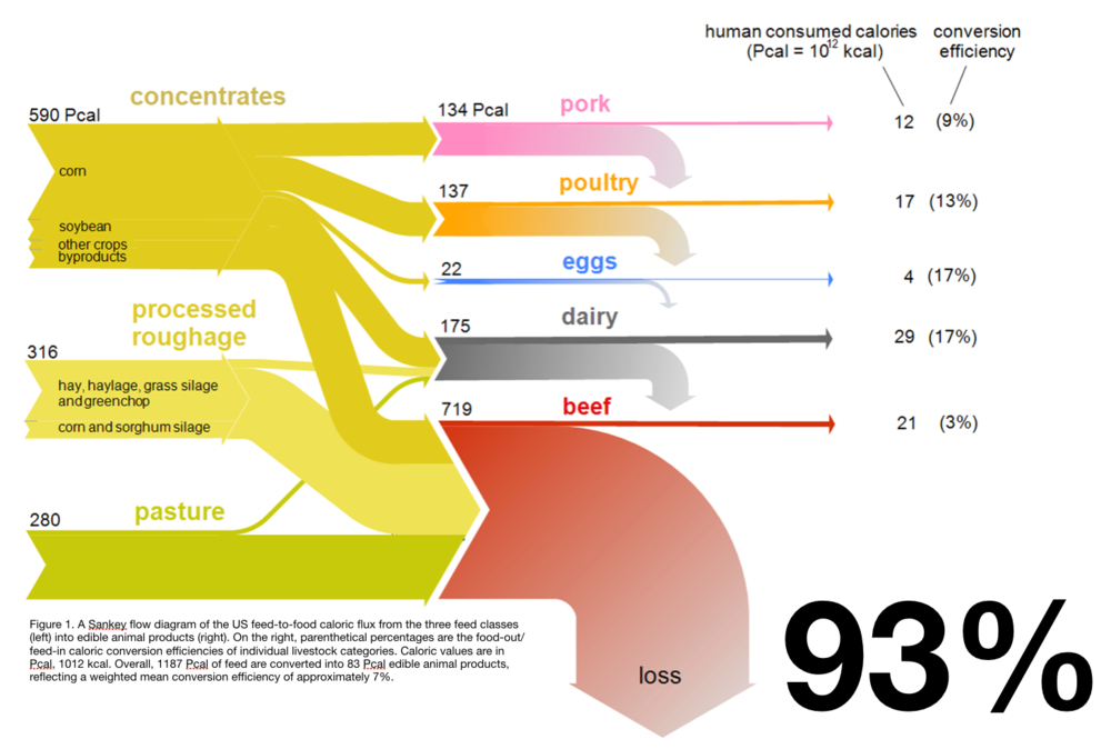 Animal agriculture wastes 93% of nutrients - Figure 1.A Sankey flow diagram of the US feed-to-food caloric flux from the three feed classes (left) into edible animal products (right). On the right, parenthetical percentages are the food-out/feed-in caloric conversion efficiencies of individual livestock categories. Caloric values are in Pcal, 1012 kcal. Overall, 1187 Pcal of feed are converted into 83 Pcal edible animal products, reflecting a weighted mean conversion efficiency of approximately 7%.Source: http://iopscience.iop.org/article/10.1088/1748-9326/11/10/105002
