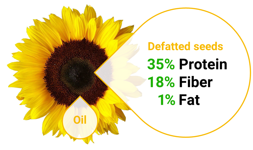 Defatted seeds are the dry matter left after oils are extracted from many crops such as sunflower seeds, cotton seeds, canola, etc.