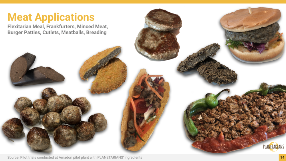 PLANETARIANS Meat applications for customers willing to follow flexitarian lifestyle.png