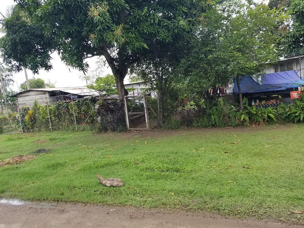 Daru houses1.jpg