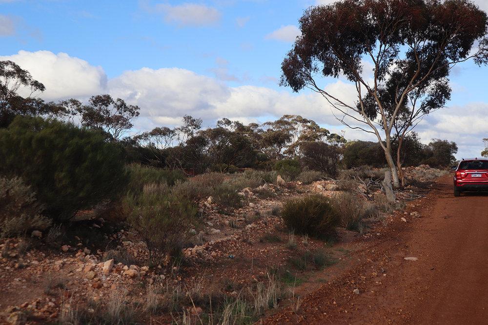 outback1.jpg