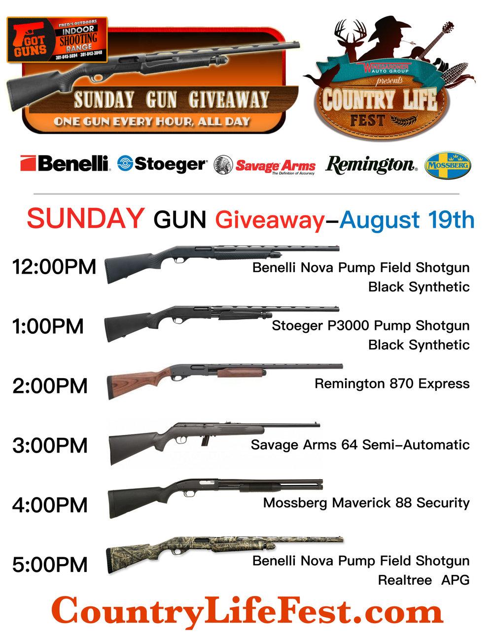 Gun giveaway 2018.jpg