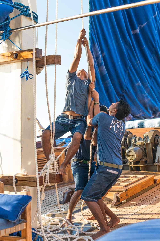 Ocean Pure staff equipage sailing komodo