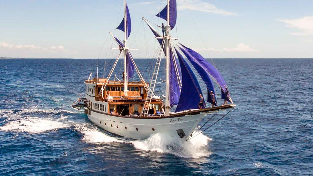 Sailing on Ocean Pure
