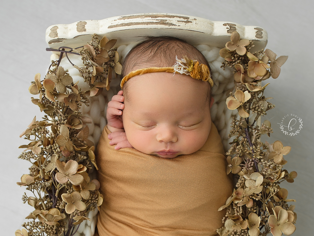 Babsie-Baby-Photography-Newborn-Photographer-in-San-Diego-Oceanside-Baby-Girl-Gold-Flowers-001.png