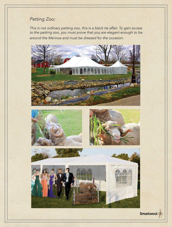 SW Petting Zoo Flattened (wecompress.com)-page-001.jpg