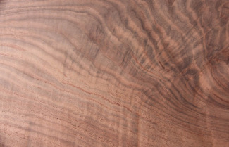 live edge - Claro walnut