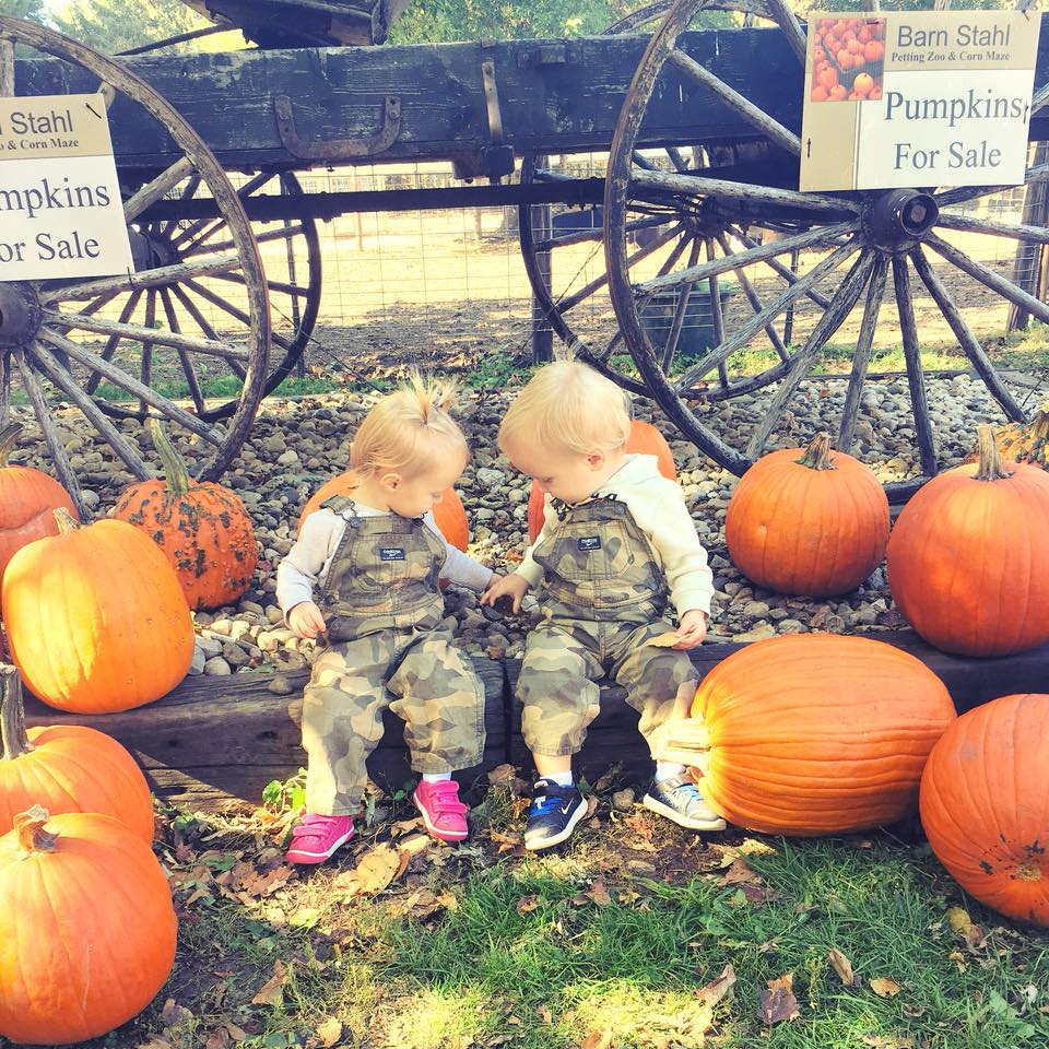 Pumpkin Patch 2018-01.jpg