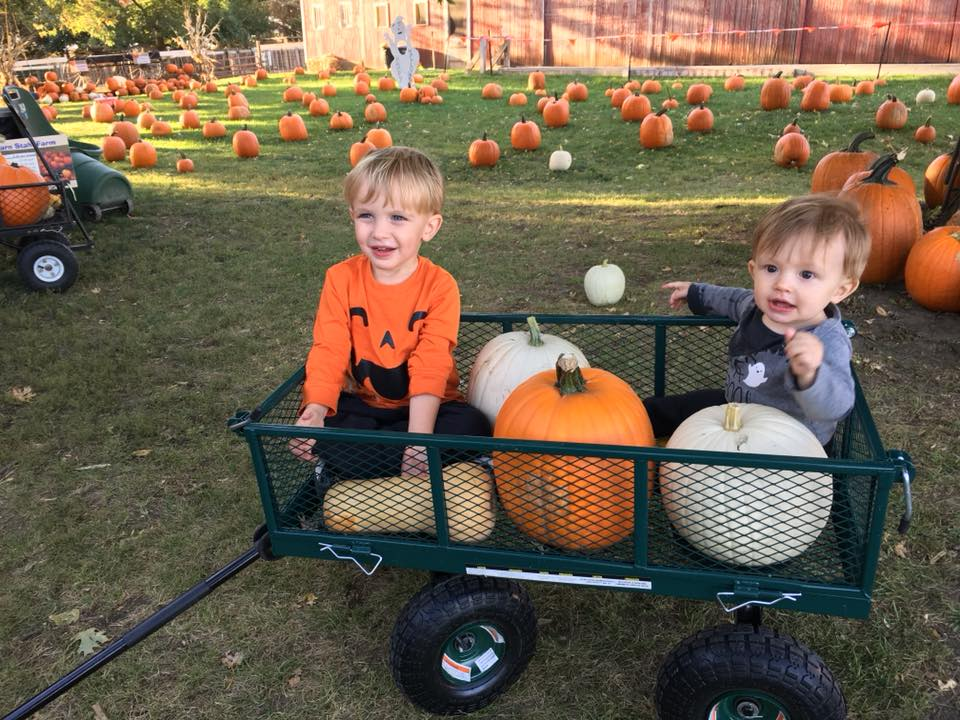 Pumpkin Patch 2018-02.jpg