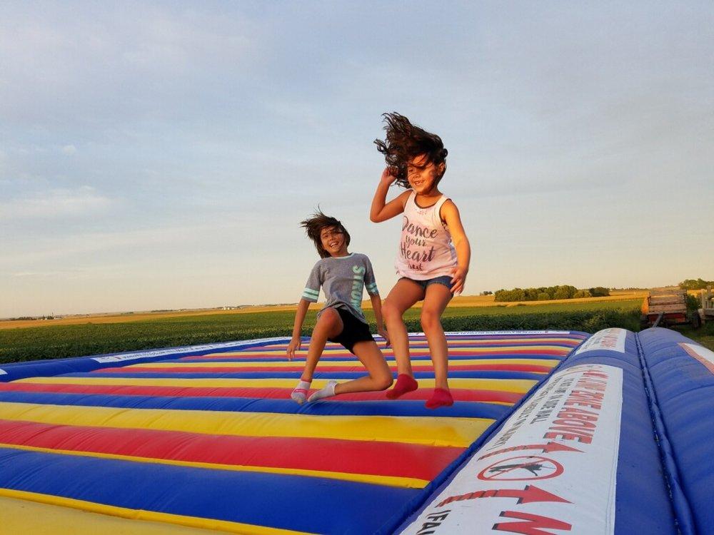 jumping pad.jpg