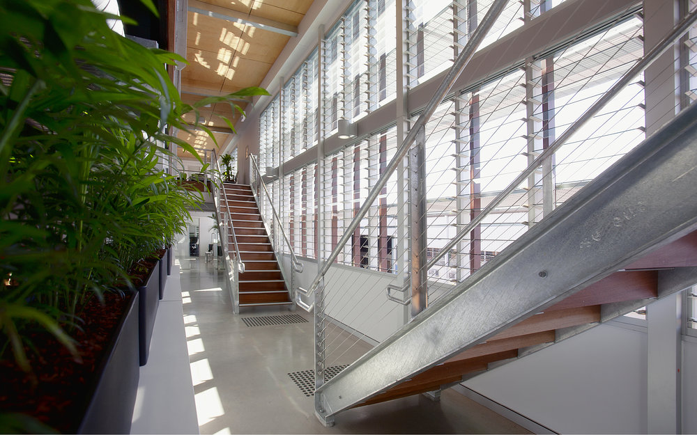 light filled foyer with natural ventilation