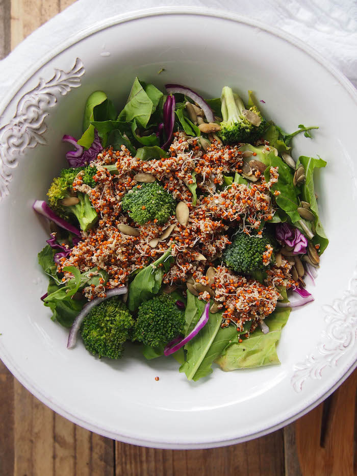 Arugula Salad with Sprouted Amaranth