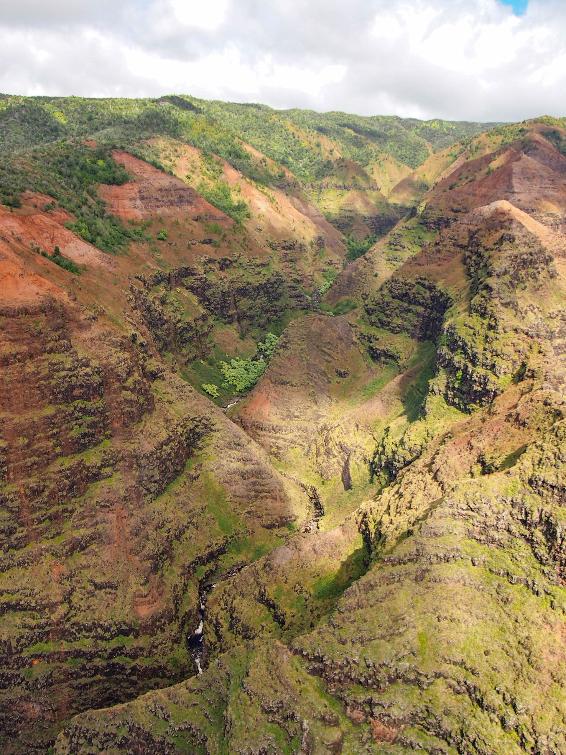 Waimea Canyon from the air