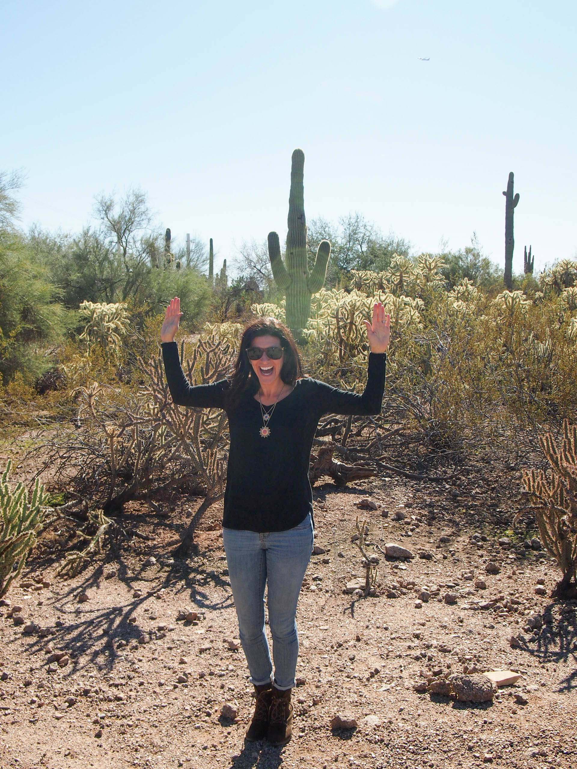 I found the perfect cactus!